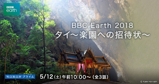BBC Earth 2018 タイ 楽園への招待状