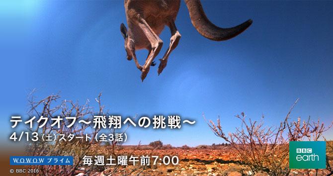 BBC Earth テイクオフ~飛翔への挑戦~