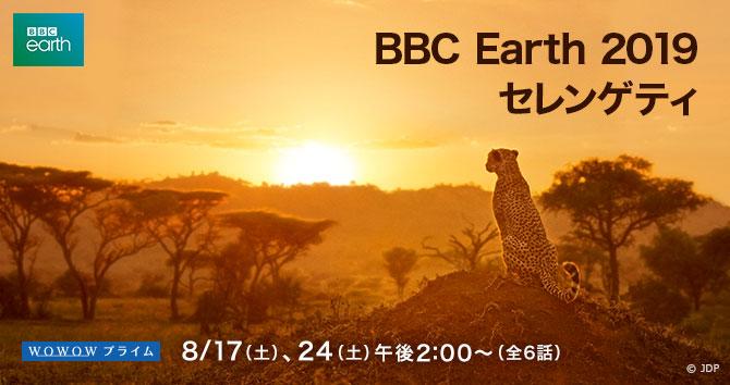 BBC Earth 2019 セレンゲティ