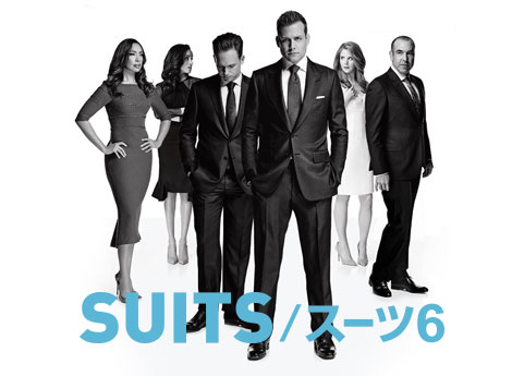 SUITS/スーツ6