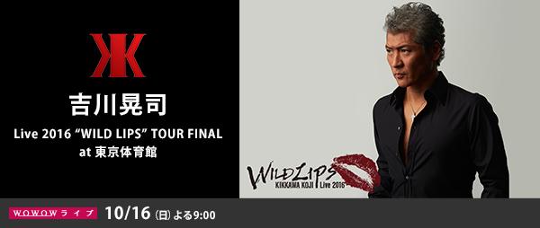 �g��W�i Live 2016 �gWILD LIPS�h TOUR FINAL at �����̈��
