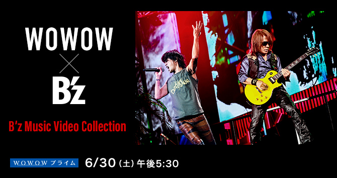 B'z Music Video Collection