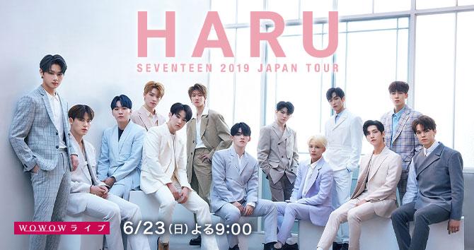 SEVENTEEN 2019 JAPAN TOUR 'HARU'