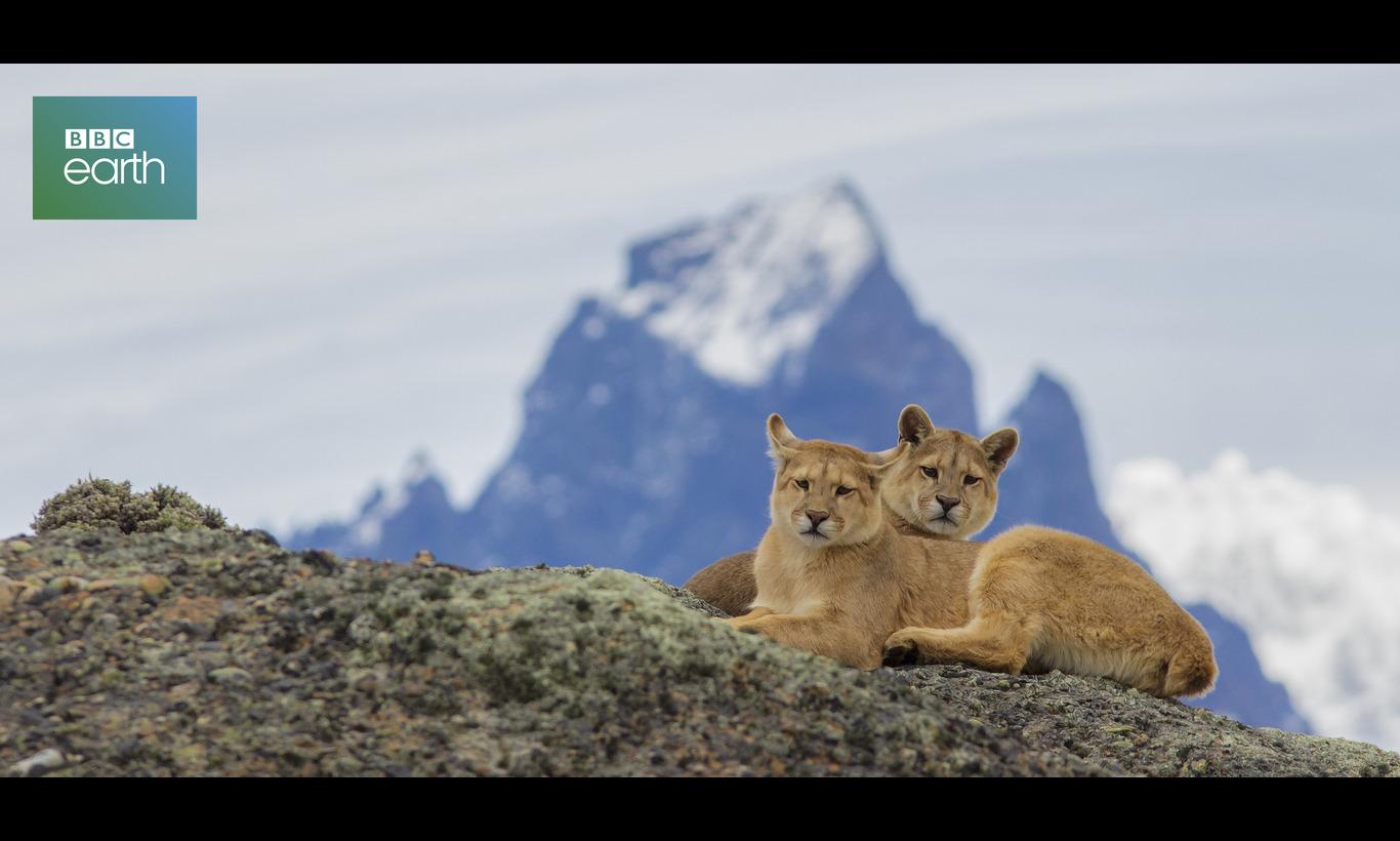 BBC Earth パタゴニア〜山嶺のフロンティア〜