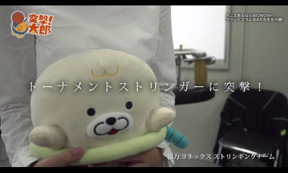 「突撃太郎! トーナメントストリンガー」テニス太郎 2017年10月放送分