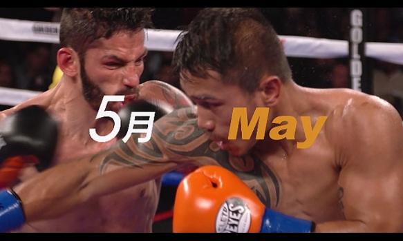 5月のエキサイトマッチ〜世界プロボクシング
