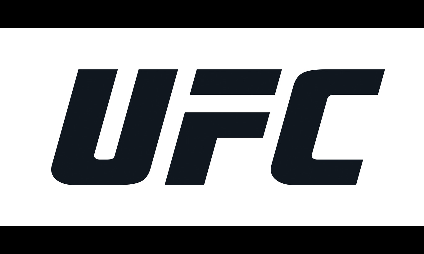 UFC-究極格闘技-