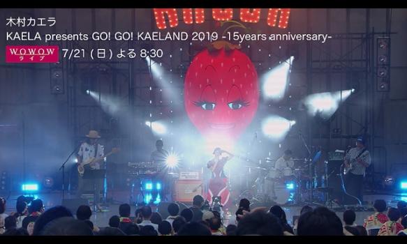 木村カエラ デビュー15周年記念特集 ~いちご~/ライブダイジェスト