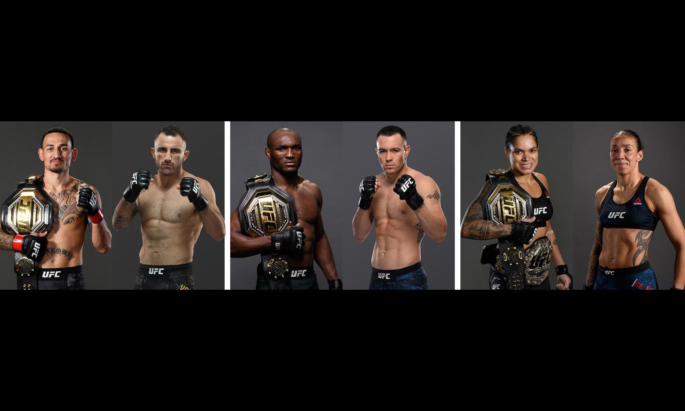 UFC-究極格闘技- UFC245 in ラスベガス