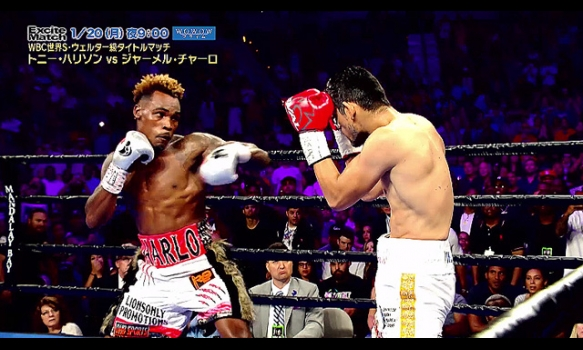 エキサイトマッチ~世界プロボクシング/トニー・ハリソン vs ジャーメル・チャーロ/番組宣伝映像