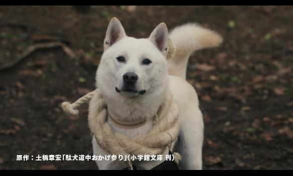 連続ドラマW 大江戸グレートジャーニー ~ザ・お伊勢参り~/プロモーション映像(120秒)