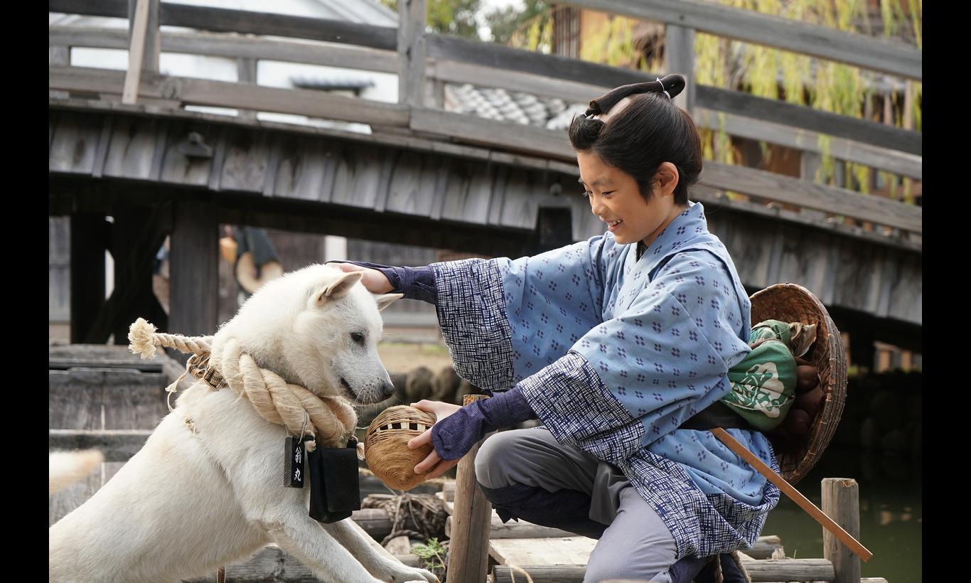 連続ドラマW 大江戸グレートジャーニー ~ザ・お伊勢参り~