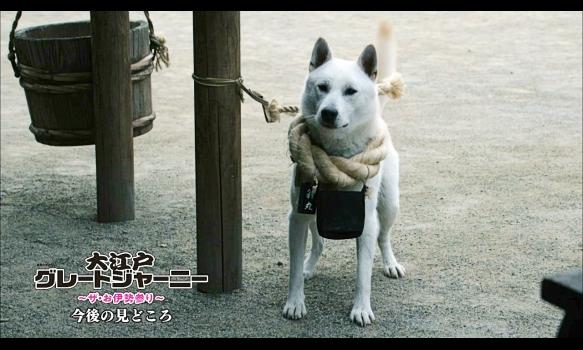 連続ドラマW 大江戸グレートジャーニー ~ザ・お伊勢参り~/今後の見どころ