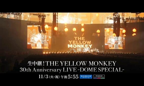 THE YELLOW MONKEY/番組プロモーション映像