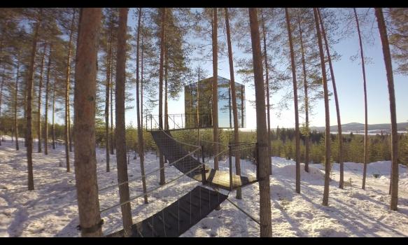 プラネット・ホーム 明日の暮らし #1 ツリーホテル ~スウェーデン~