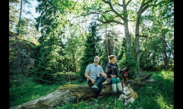フィンランド/森へ帰ろう #1 キングスロードの城と森