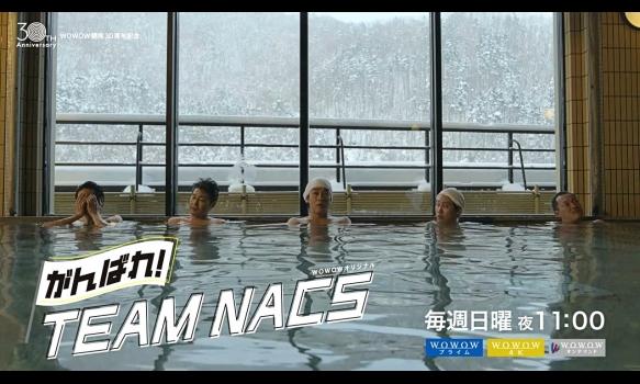 がんばれ!TEAM NACS/見どころ